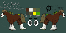 Size: 3655x1821 | Tagged: safe, artist:slimyferret, oc, oc:sour scotch, earth pony, horse, beard, braid, branding, clydesdale, draft horse, facial hair, female to male, hair tie, hoers, ponysona, reference sheet, solo, trans, trans boy, trans stallion, transgender