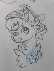 Size: 720x960 | Tagged: safe, artist:silentwolf-oficial, oc, oc only, earth pony, pony, bust, chest fluff, derpibooru import, ear fluff, earth pony oc, hat, lineart, one eye closed, signature, solo, traditional art, wink