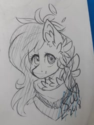 Size: 720x960 | Tagged: safe, artist:silentwolf-oficial, oc, oc only, earth pony, pony, bust, chest fluff, derpibooru import, ear fluff, earth pony oc, lineart, neckerchief, signature, solo, traditional art