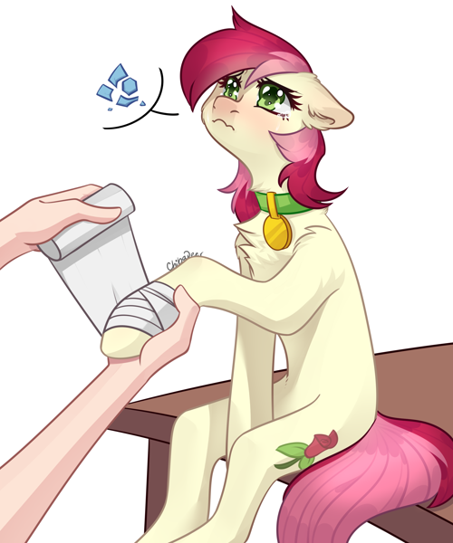 Size: 2500x3000 | Tagged: safe, artist:chibadeer, roseluck, earth pony, human, pony, bandage, behaving like a cat, broken vase, chest fluff, collar, crying, cute, featured image, female, fluffy, hand, mare, offscreen character, offscreen human, pet tag, pony pet, rosepet, sad, sadorable, sitting