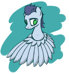 Size: 1234x1327   Tagged: safe, artist:superderpybot, soarin', pegasus, pony, male, solo, stallion, wings